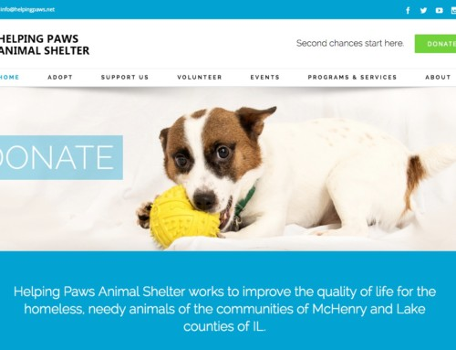 New and Improved Helping Paws Website