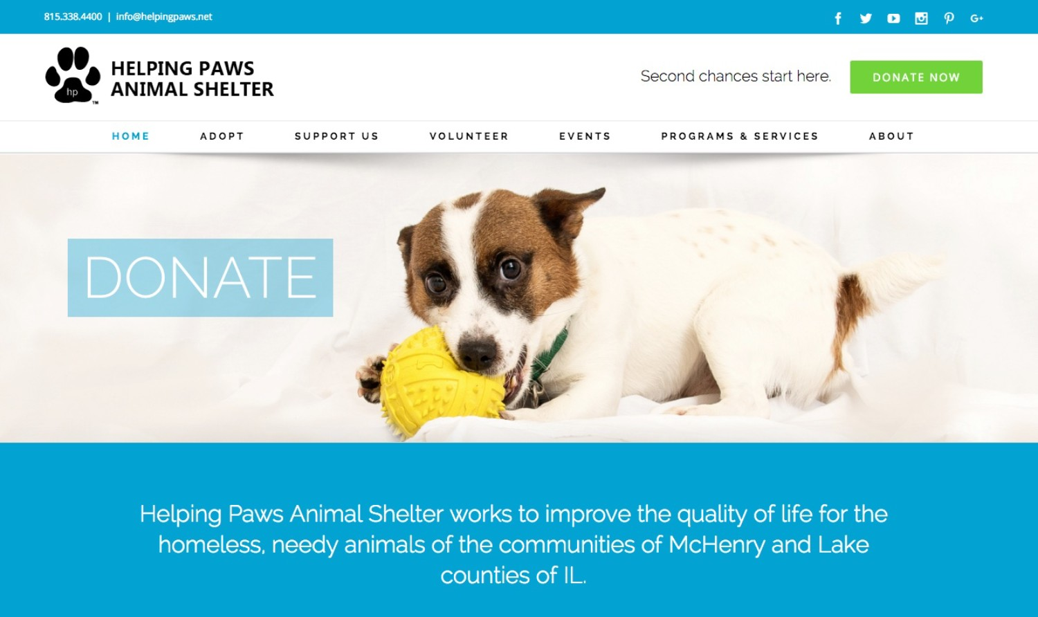 new and improved helping paws website | helping paws animal shelter