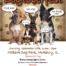 dogtober-resc-flyer