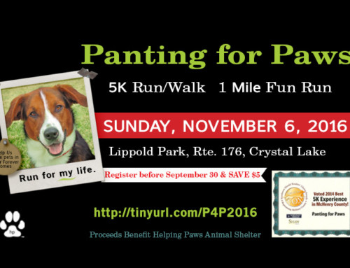 Time to register for the 10th Annual Panting for Paws!