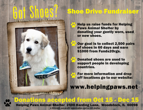 Shoes for Shelter Fundraiser